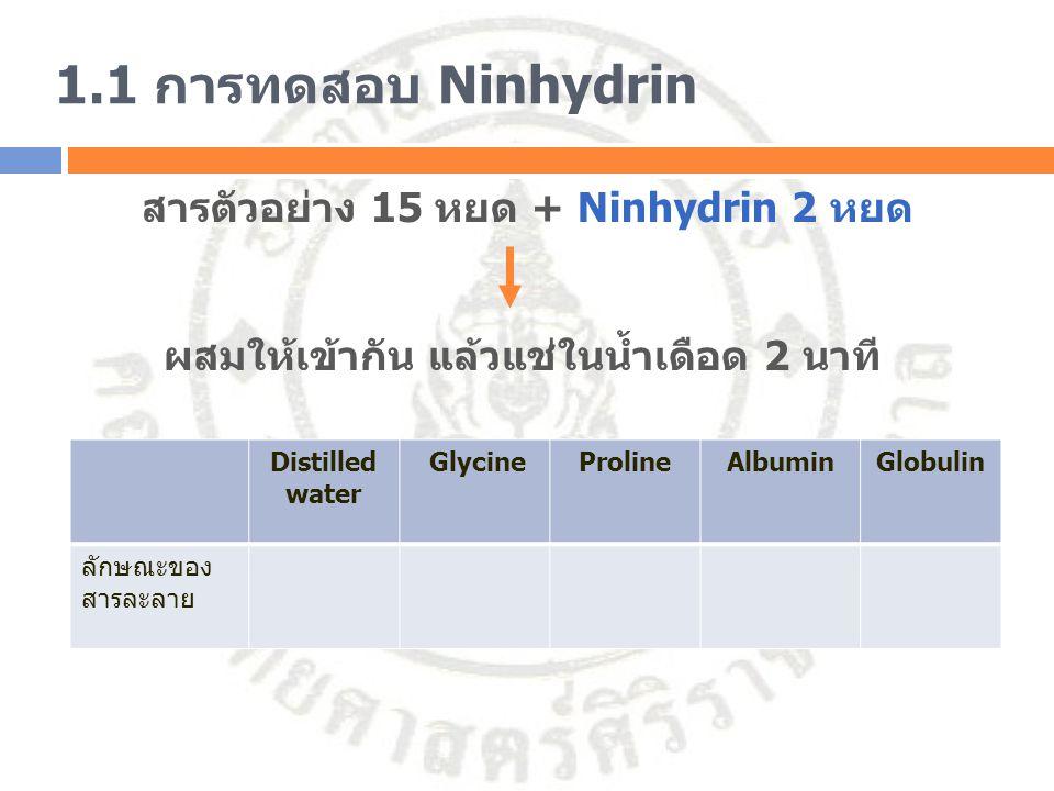 1.1 การทดสอบ Ninhydrin สารตัวอย่าง 15 หยด + Ninhydrin 2 หยด