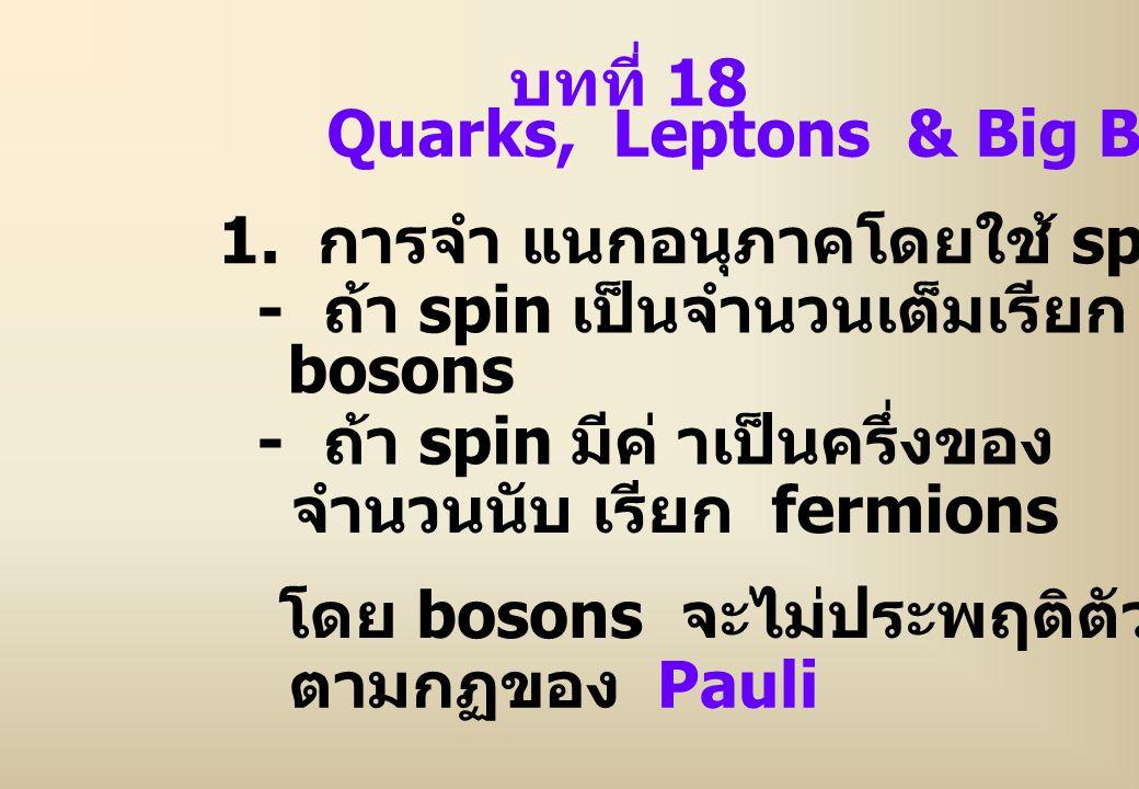บทที่ 18 Quarks, Leptons & Big Bang. 1. การจำ แนกอนุภาคโดยใช้ spin. - ถ้า spin เป็นจำนวนเต็มเรียก.