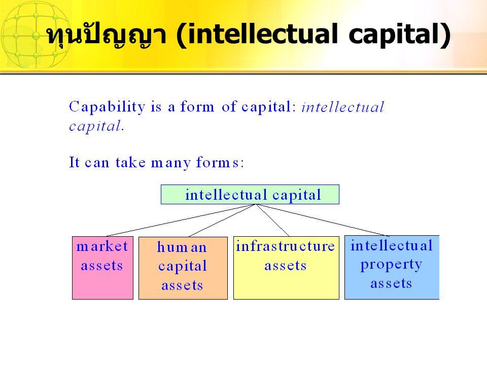 ทุนปัญญา (intellectual capital)