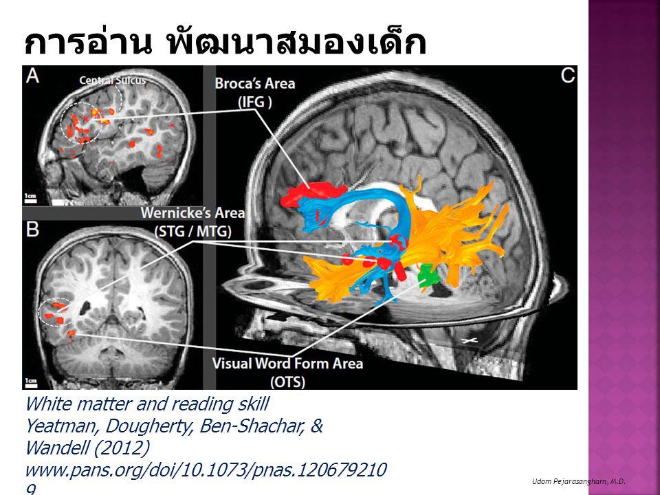 การอ่าน พัฒนาสมองเด็ก