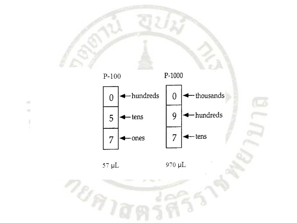 P-100 57 µL 970 µL