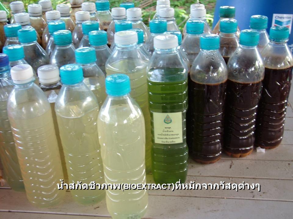 น้ำสกัดชีวภาพ(BIOEXTRACT)ที่หมักจากวัสดุต่างๆ