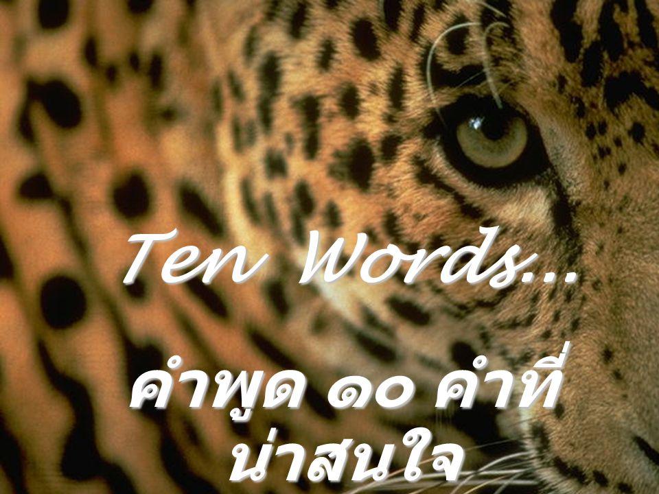 Ten Words... คำพูด ๑๐ คำที่น่าสนใจ