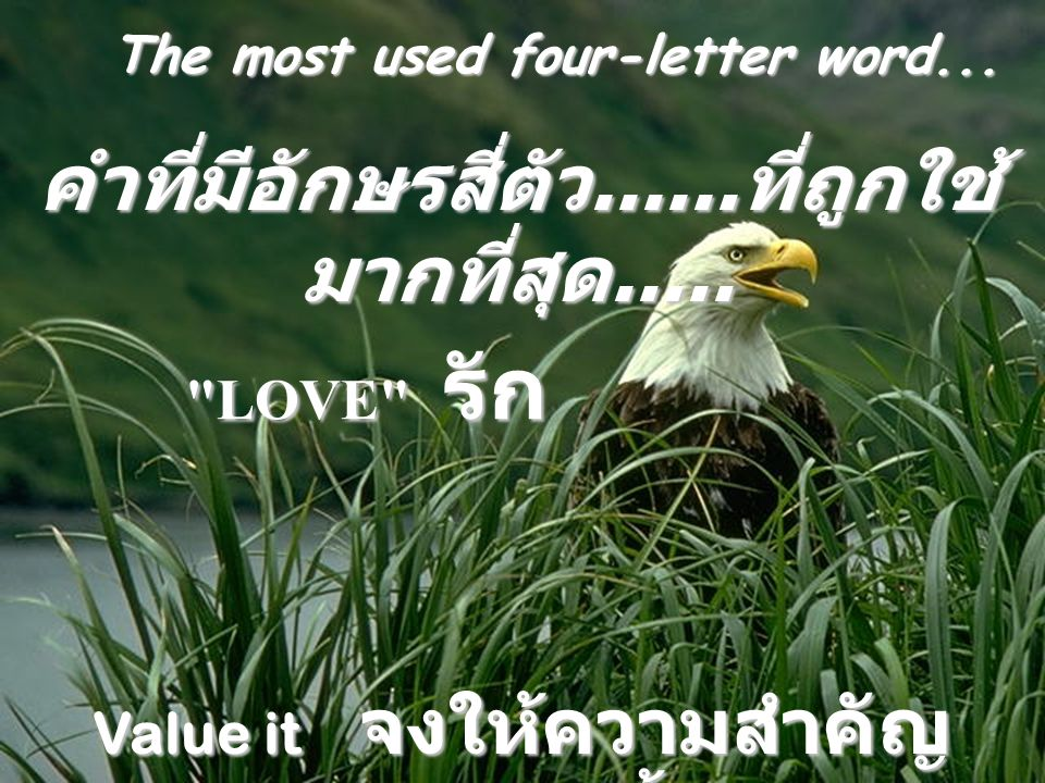 คำที่มีอักษรสี่ตัว......ที่ถูกใช้มากที่สุด.....