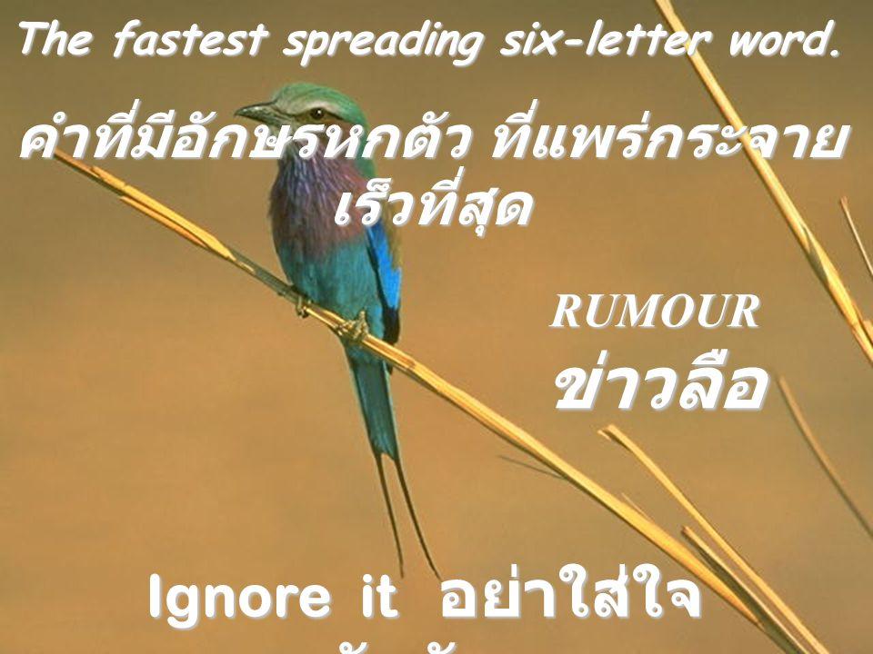 คำที่มีอักษรหกตัว ที่แพร่กระจายเร็วที่สุด Ignore it อย่าใส่ใจกับมัน