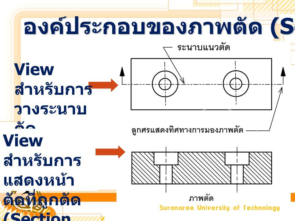 องค์ประกอบของภาพตัด (Section view)