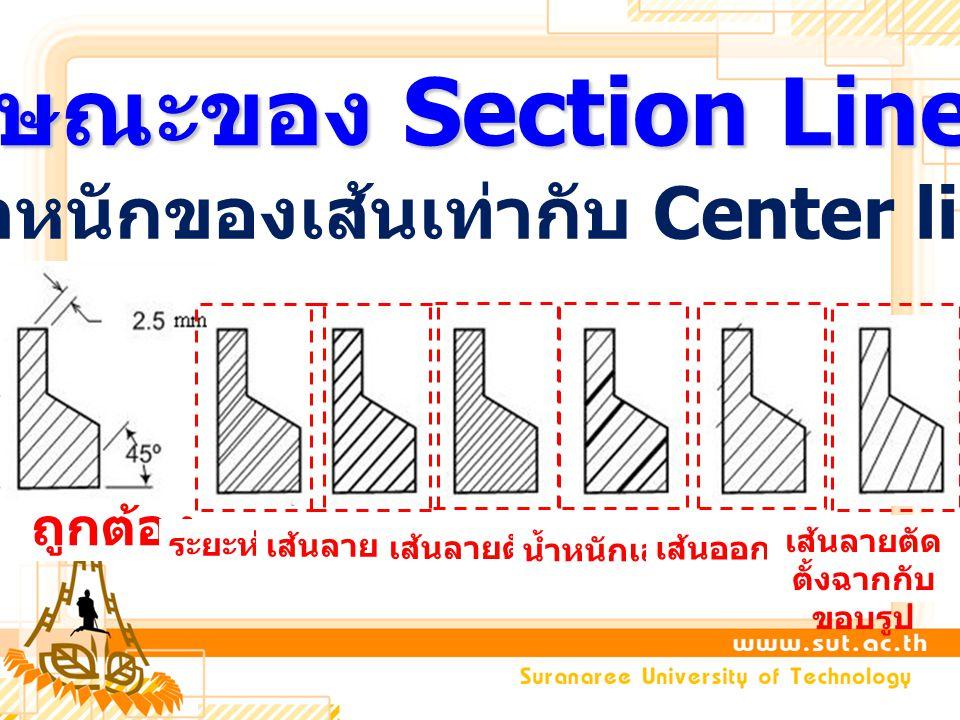 ลักษณะของ Section Line