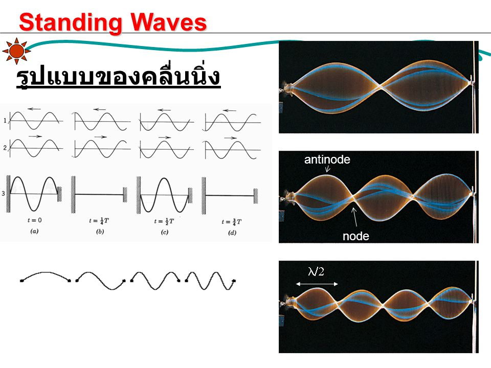 Standing Waves รูปแบบของคลื่นนิ่ง antinode node l/2