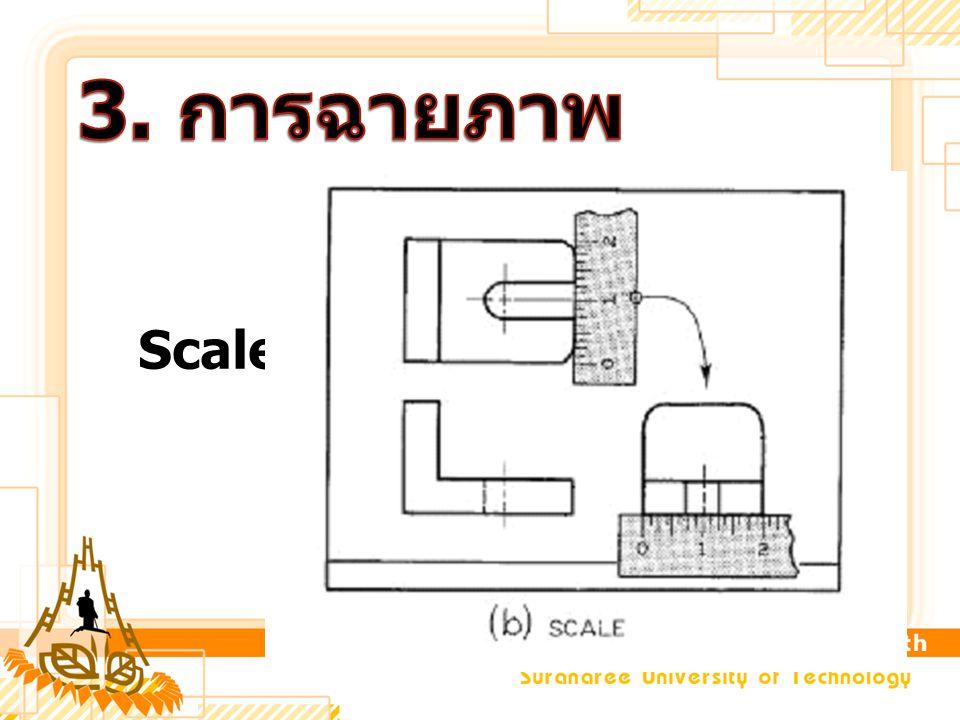 3. การฉายภาพ Scales