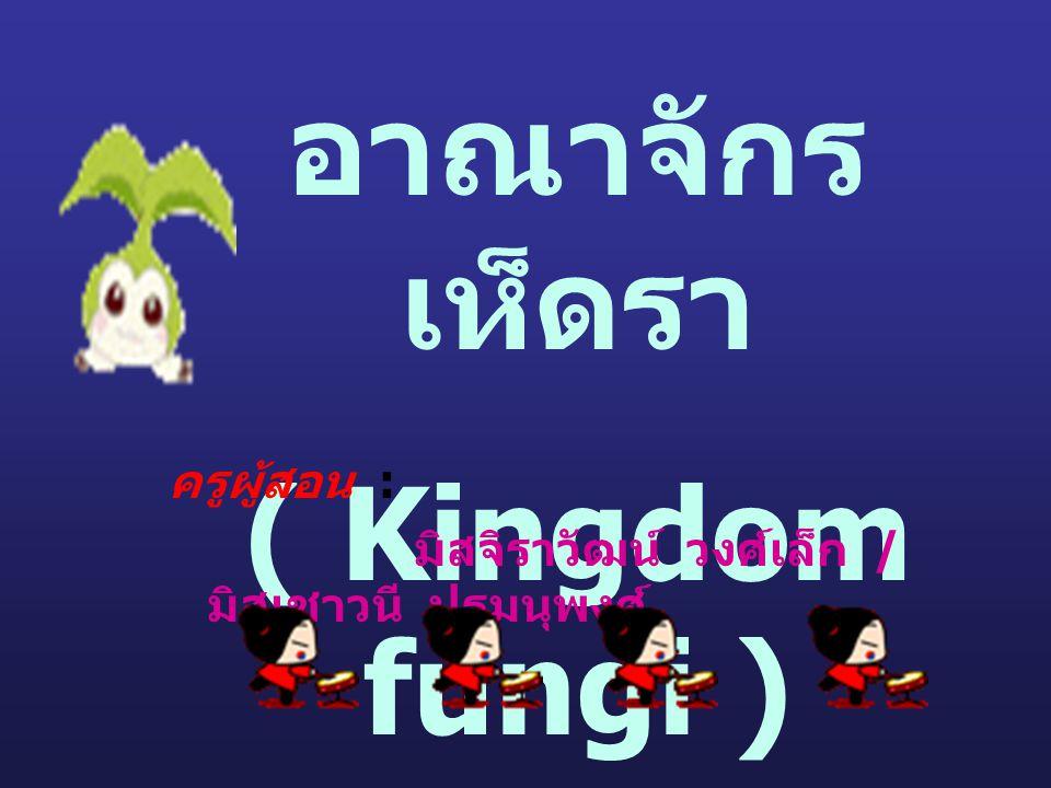 อาณาจักรเห็ดรา ( Kingdom fungi )