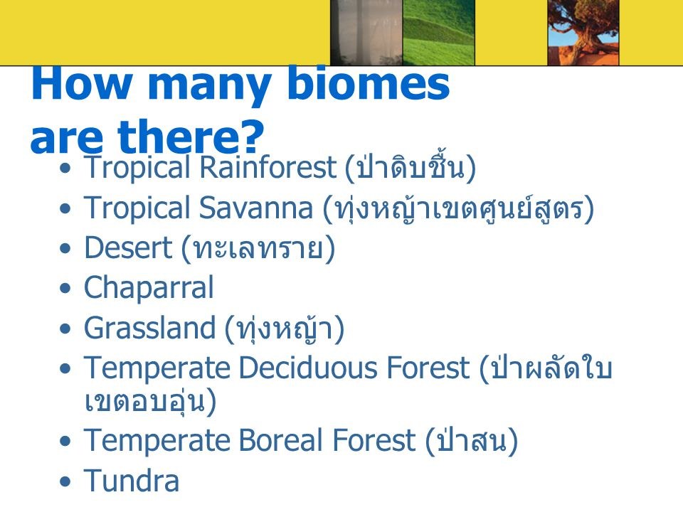 How many biomes are there