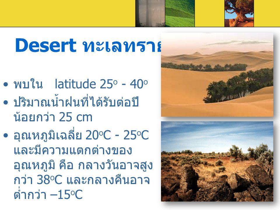 Desert ทะเลทราย พบใน latitude 25o - 40o