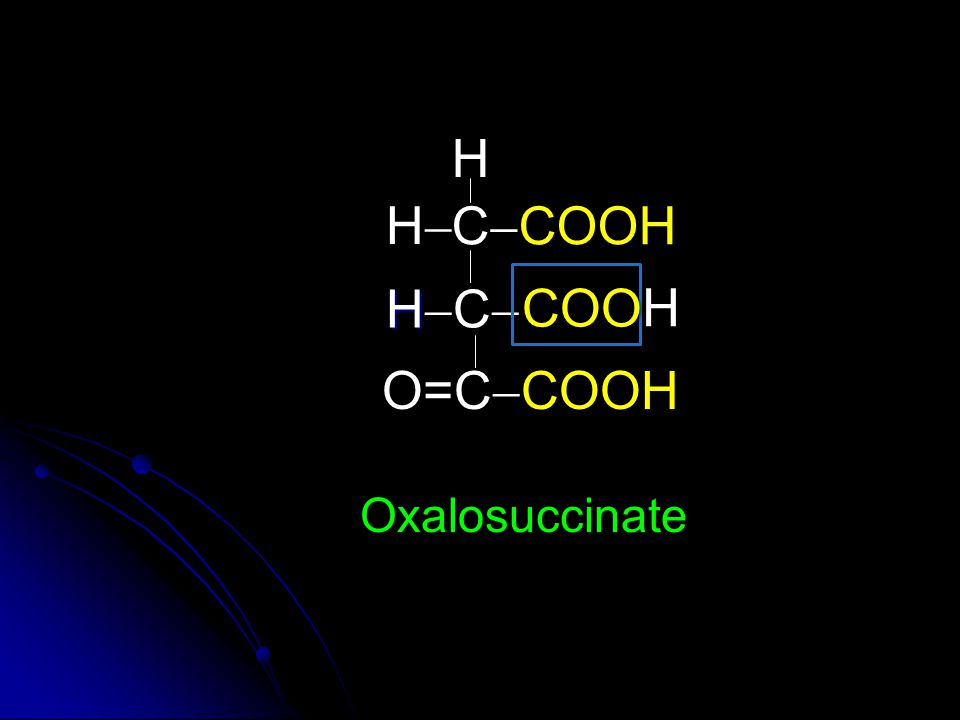 H H CCOOH HC COO H O=CCOOH Oxalosuccinate