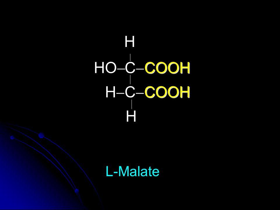 H HO CCOOH HCCOOH H L-Malate