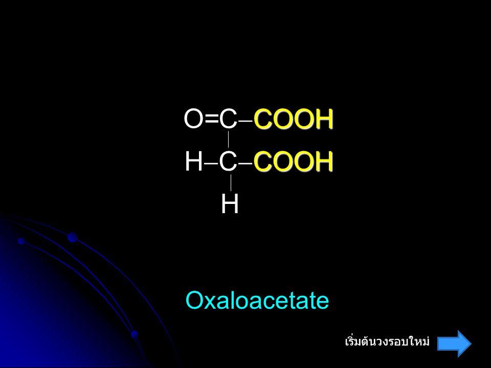O= CCOOH HCCOOH H Oxaloacetate เริ่มต้นวงรอบใหม่