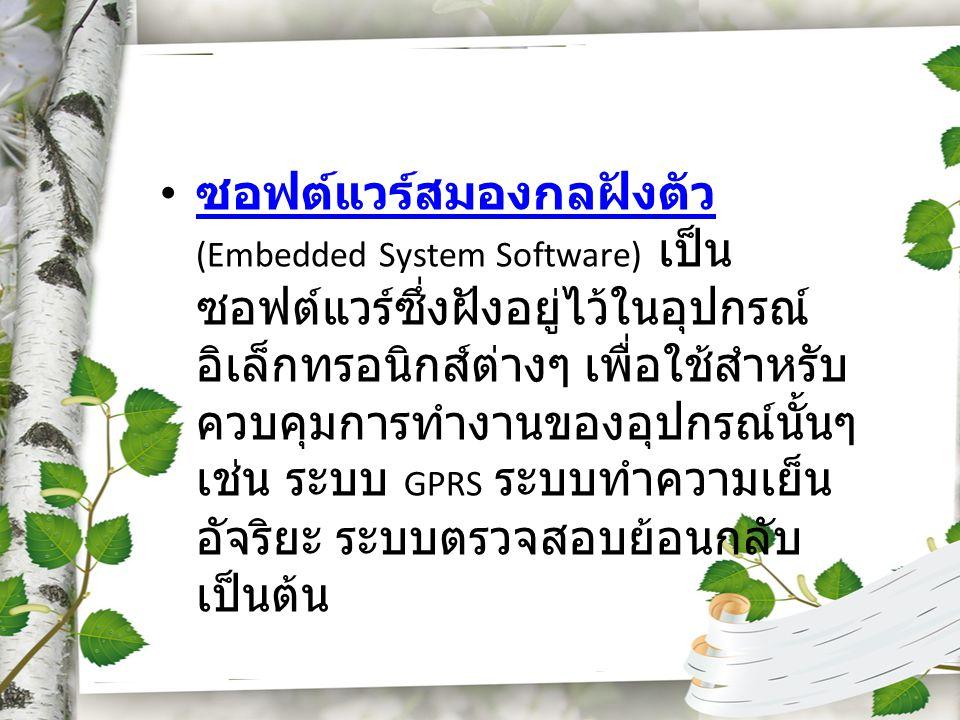 ซอฟต์แวร์สมองกลฝังตัว (Embedded System Software) เป็นซอฟต์แวร์ซึ่งฝังอยู่ไว้ในอุปกรณ์อิเล็กทรอนิกส์ต่างๆ เพื่อใช้สำหรับควบคุมการทำงานของอุปกรณ์นั้นๆ เช่น ระบบ GPRS ระบบทำความเย็น อัจริยะ ระบบตรวจสอบย้อนกลับ เป็นต้น