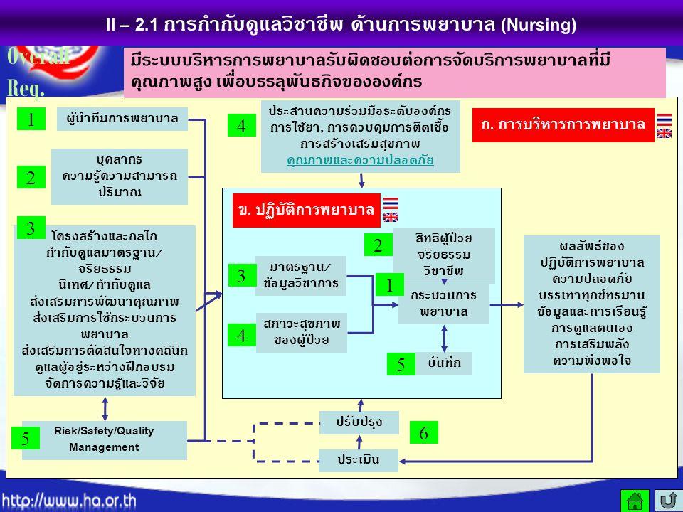 II – 2.1 การกำกับดูแลวิชาชีพ ด้านการพยาบาล (Nursing)