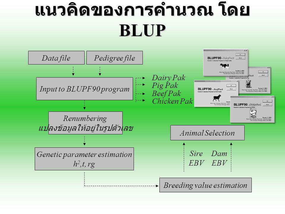 แนวคิดของการคำนวณ โดย BLUP