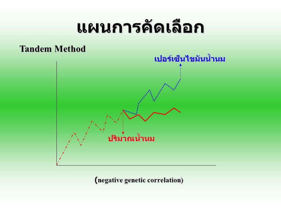แผนการคัดเลือก Tandem Method เปอร์เซ็นไขมันน้ำนม ปริมาณน้ำนม