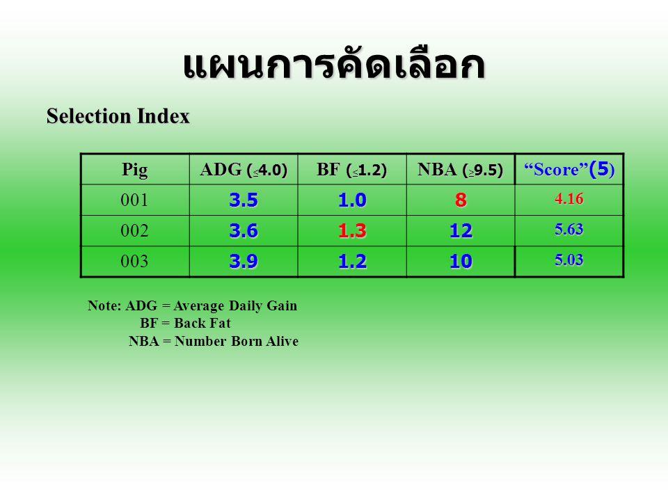 แผนการคัดเลือก Selection Index Pig ADG (<4.0) BF (<1.2)