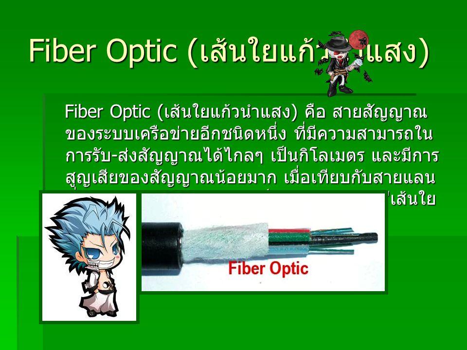 Fiber Optic (เส้นใยแก้วนำแสง)
