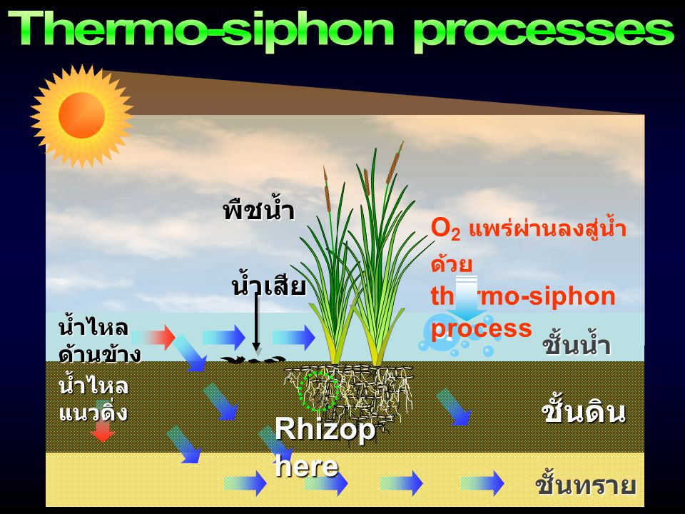 Thermo-siphon processes