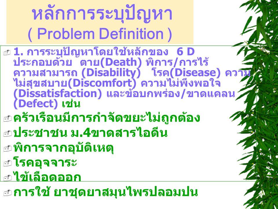 หลักการระบุปัญหา ( Problem Definition )