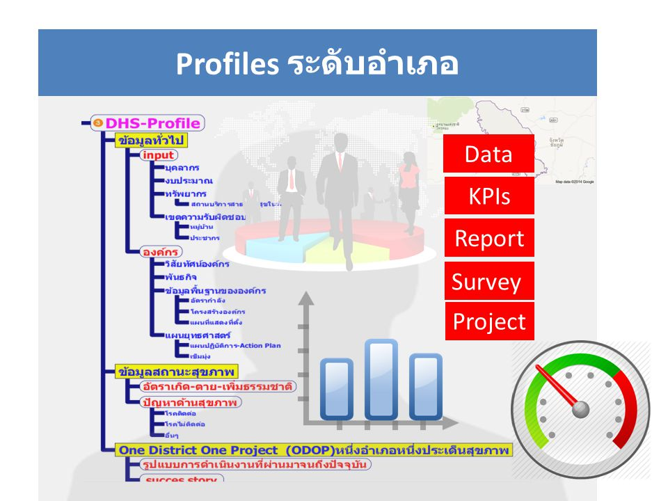 Profiles ระดับอำเภอ Data KPIs Report Survey Project