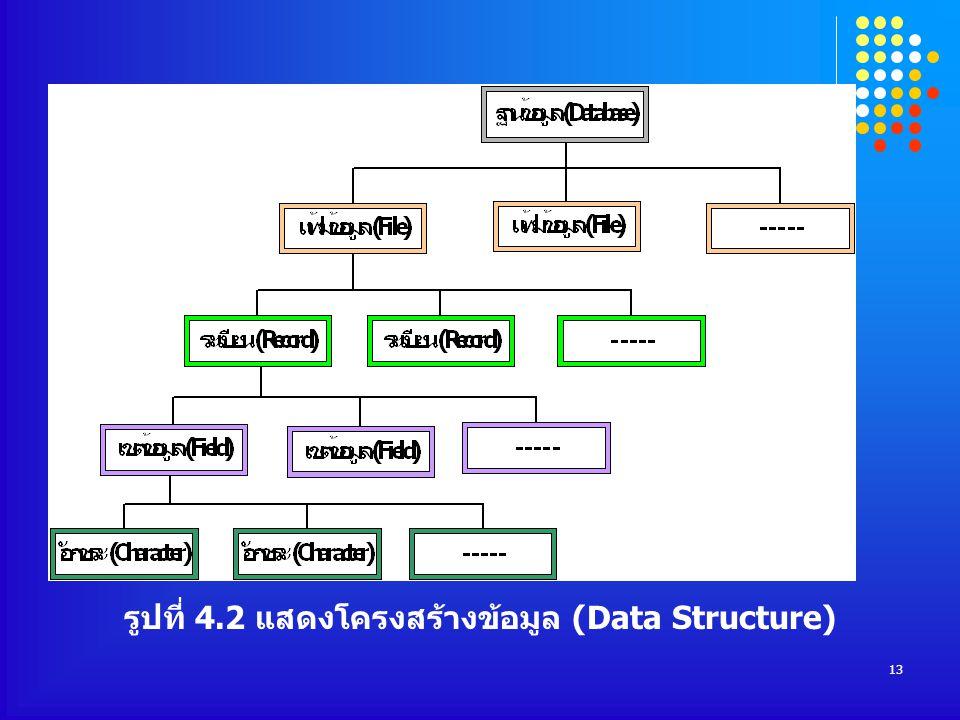 รูปที่ 4.2 แสดงโครงสร้างข้อมูล (Data Structure)