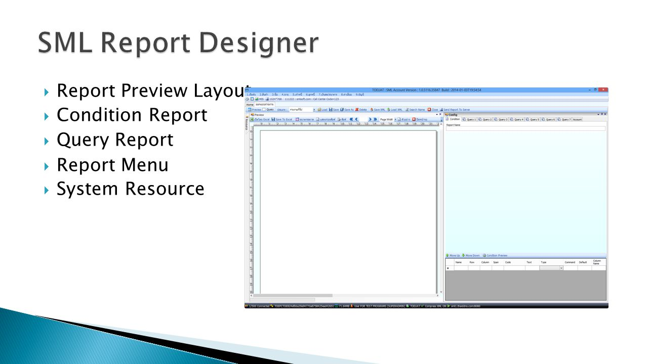SML Report Designer Report Preview Layout Condition Report