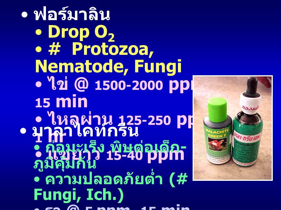 # Protozoa, Nematode, Fungi ไข่ @ 1500-2000 ppm, 15 min