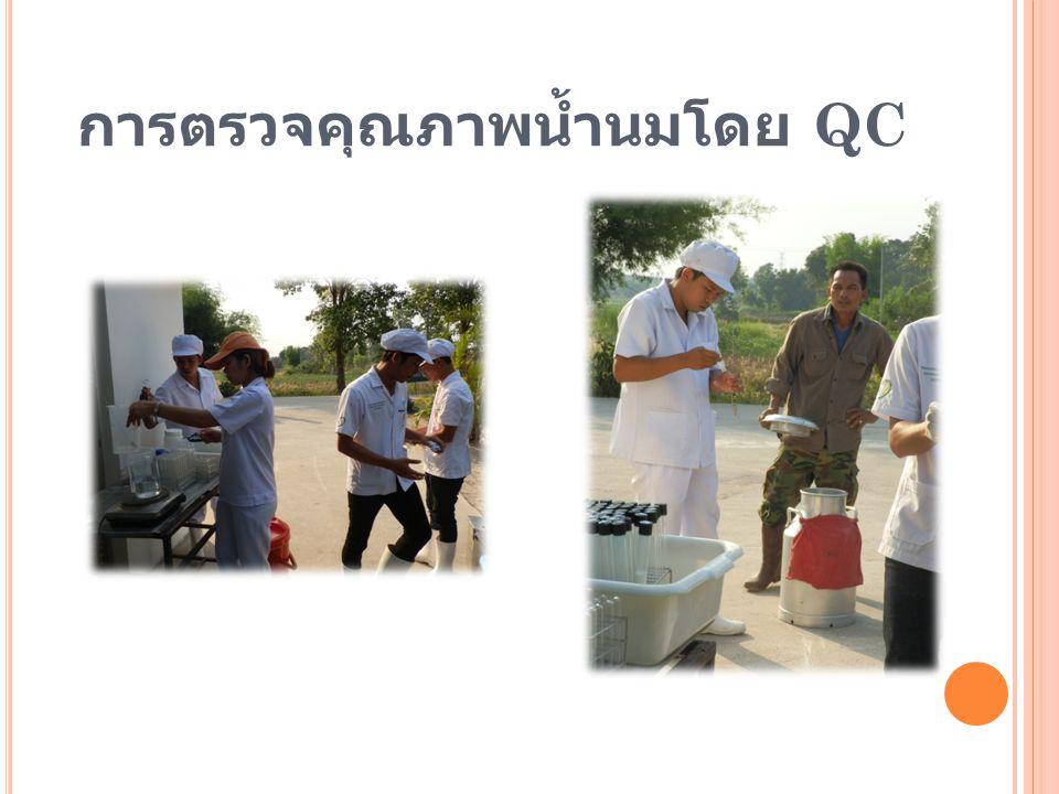 การตรวจคุณภาพน้ำนมโดย QC