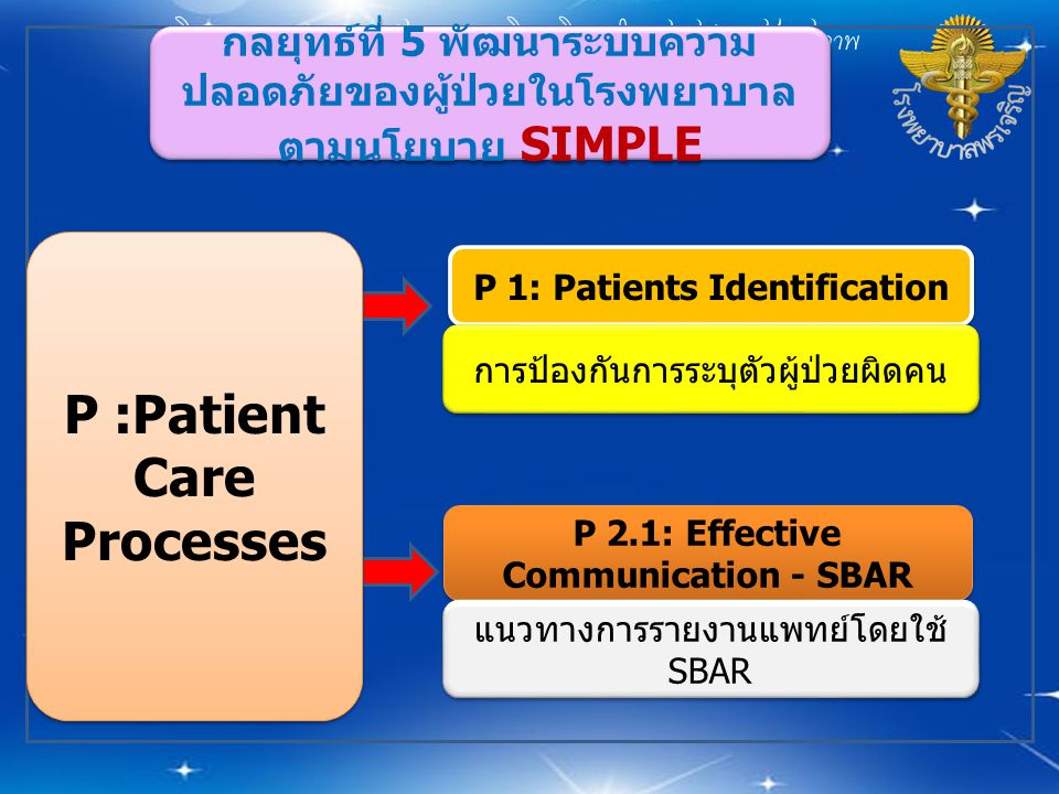 P :Patient Care Processes