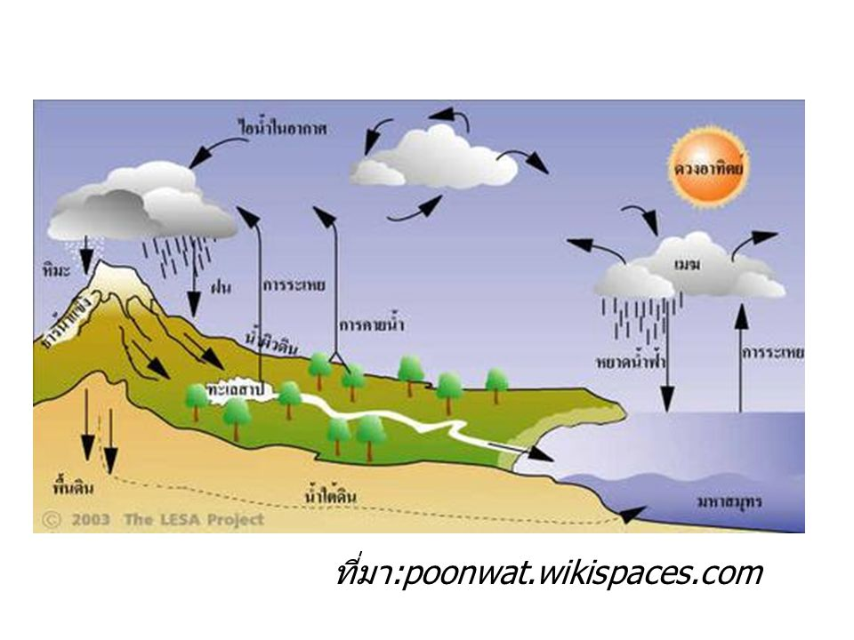 ที่มา:poonwat.wikispaces.com