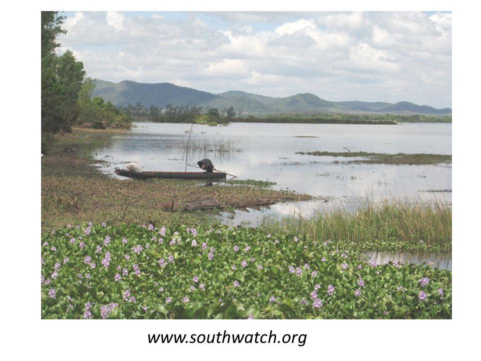 www.southwatch.org