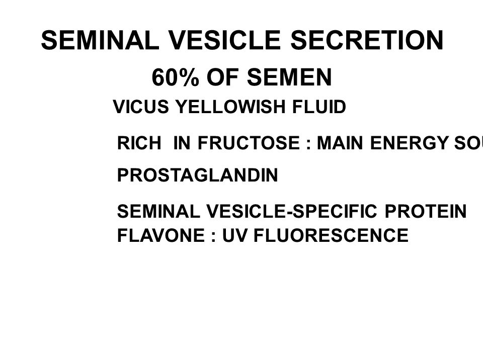 SEMINAL VESICLE SECRETION