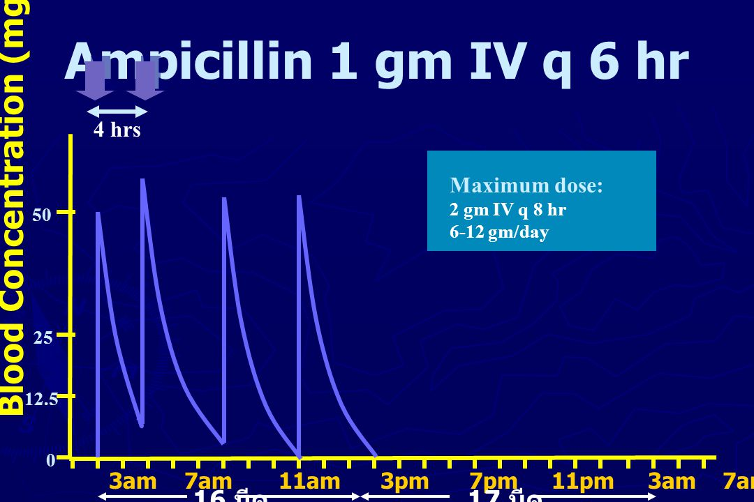 Ampicillin 1 gm IV q 6 hr Blood Concentration (mg/L) 16 มีค 17 มีค