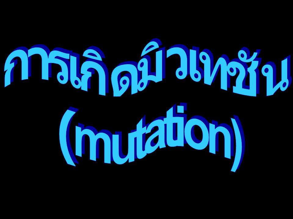 การเกิดมิวเทชัน (mutation)