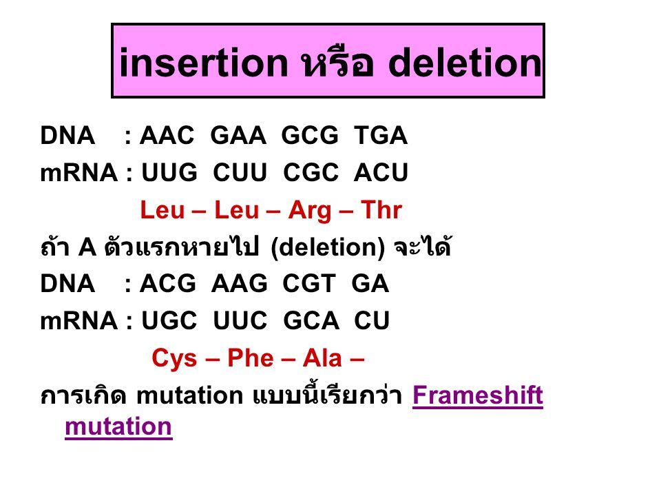 insertion หรือ deletion