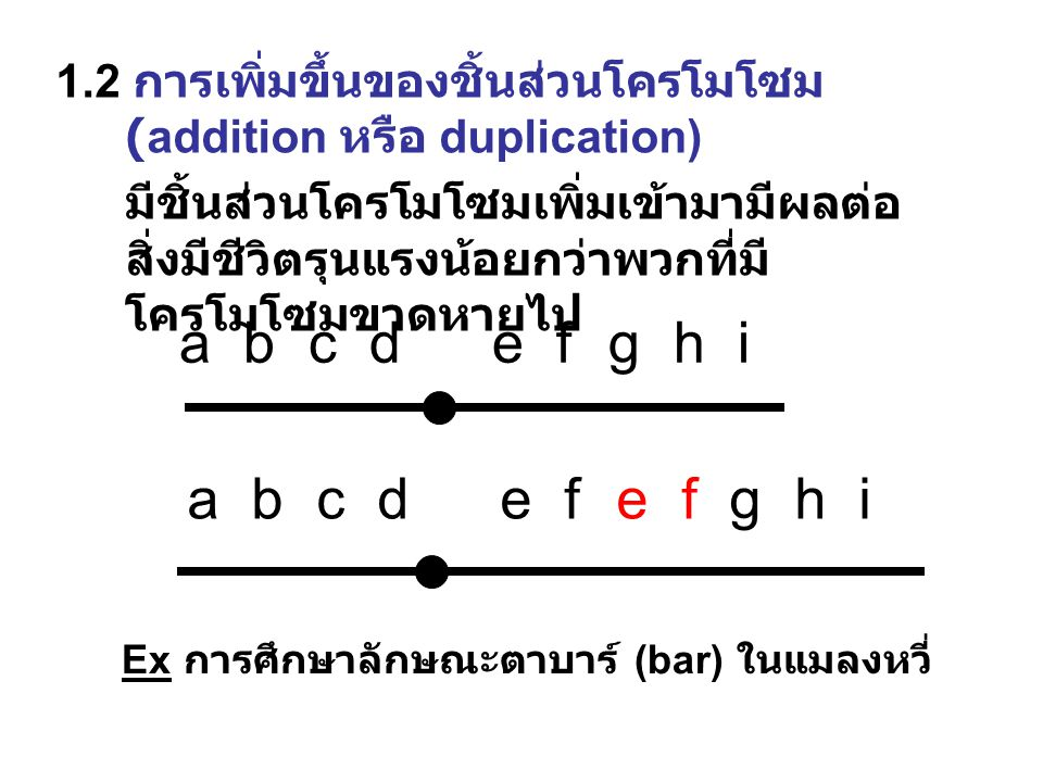 a b c d e f g h i a b c d e f e f g h i