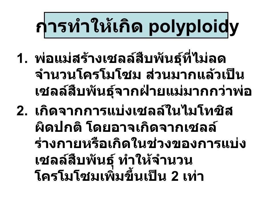 การทำให้เกิด polyploidy