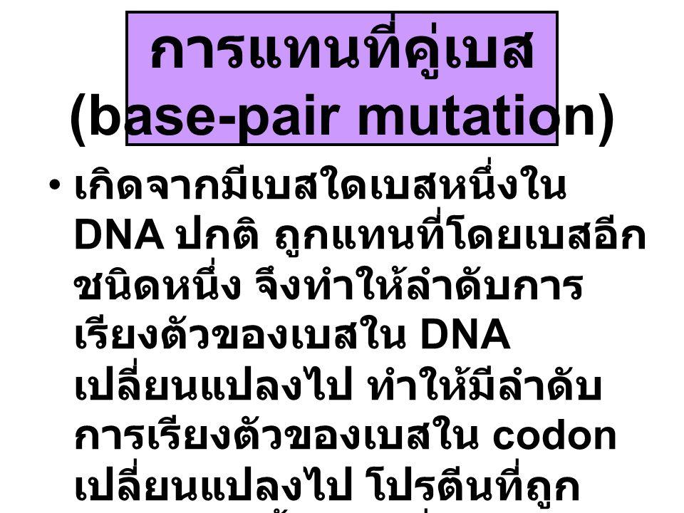 การแทนที่คู่เบส (base-pair mutation)