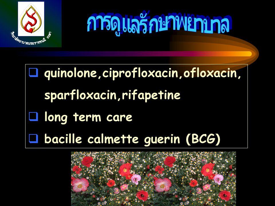 การดูแลรักษาพยาบาล quinolone,ciprofloxacin,ofloxacin,