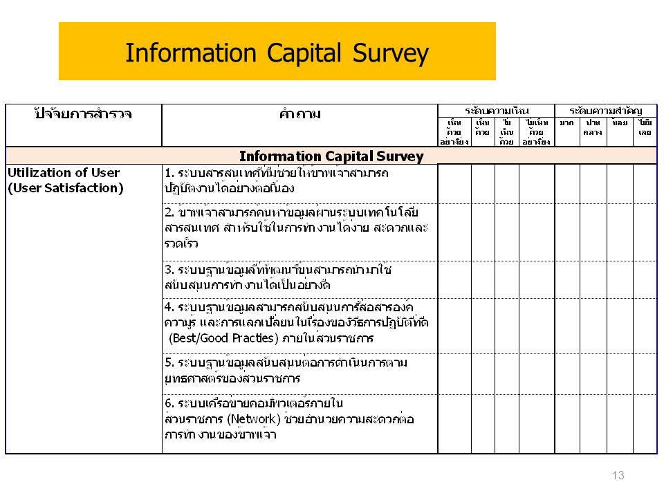 Information Capital Survey