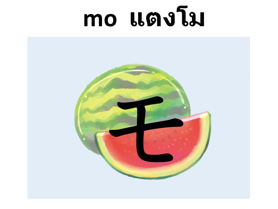mo แตงโม