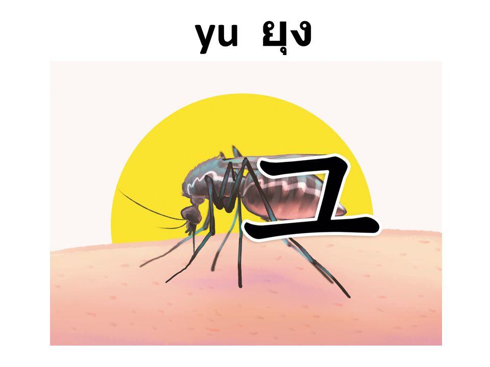 yu ยุง