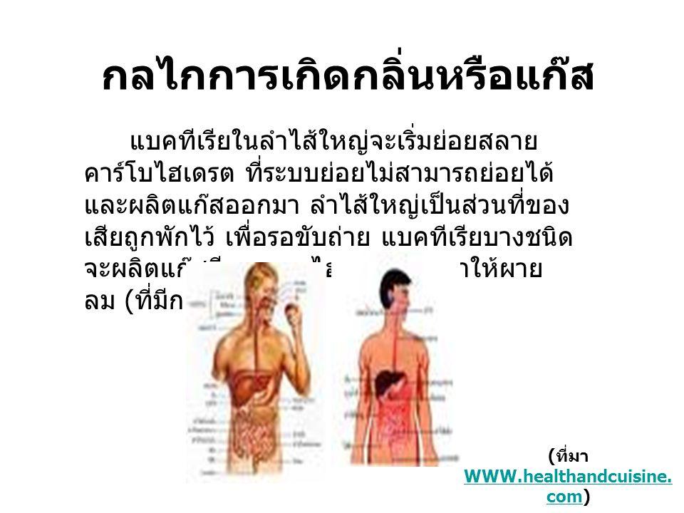 (ที่มา WWW.healthandcuisine.com)