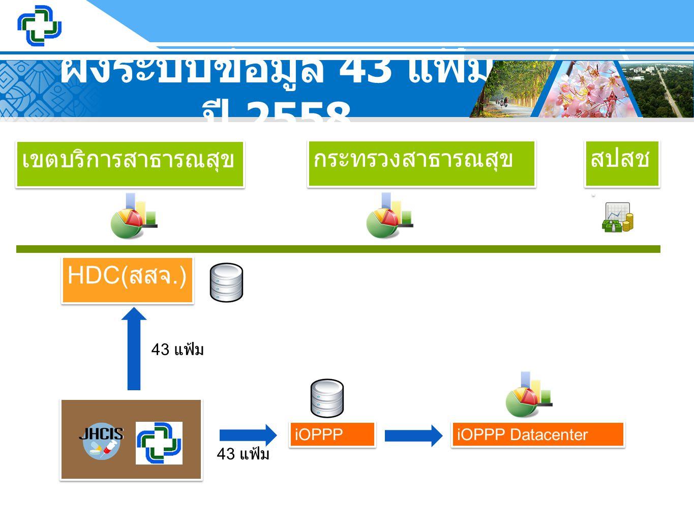 ผังระบบข้อมูล 43 แฟ้ม ปี 2558 เขตบริการสาธารณสุข กระทรวงสาธารณสุข