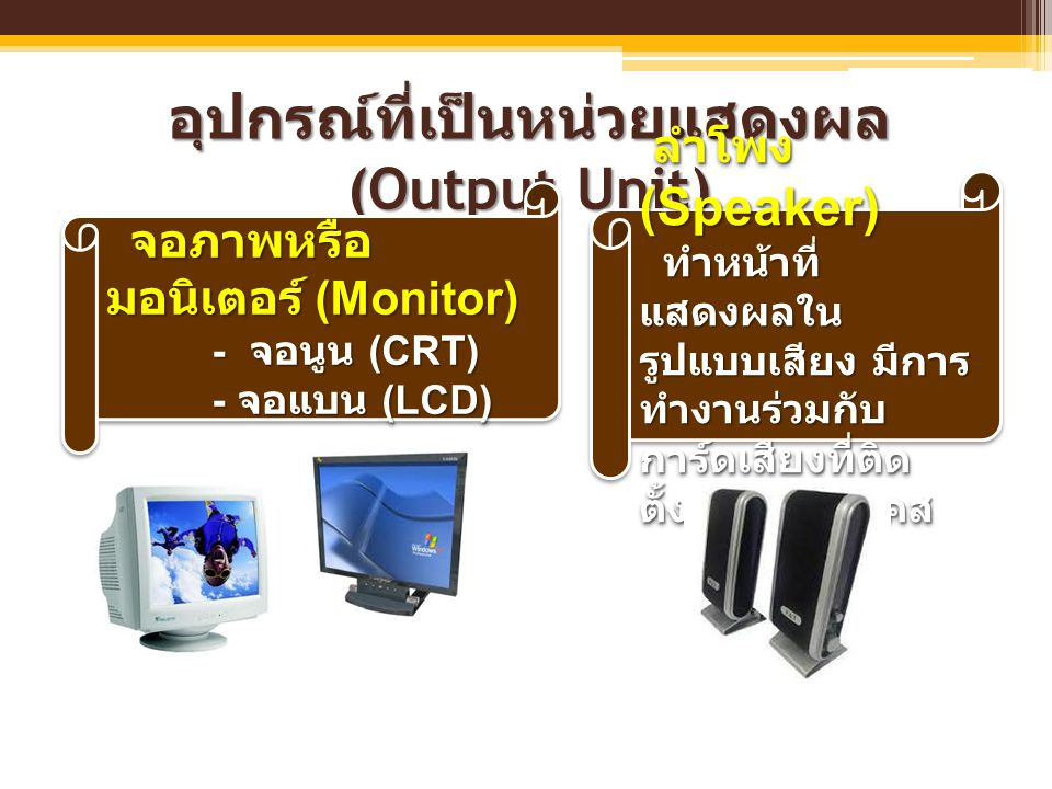 อุปกรณ์ที่เป็นหน่วยแสดงผล (Output Unit)