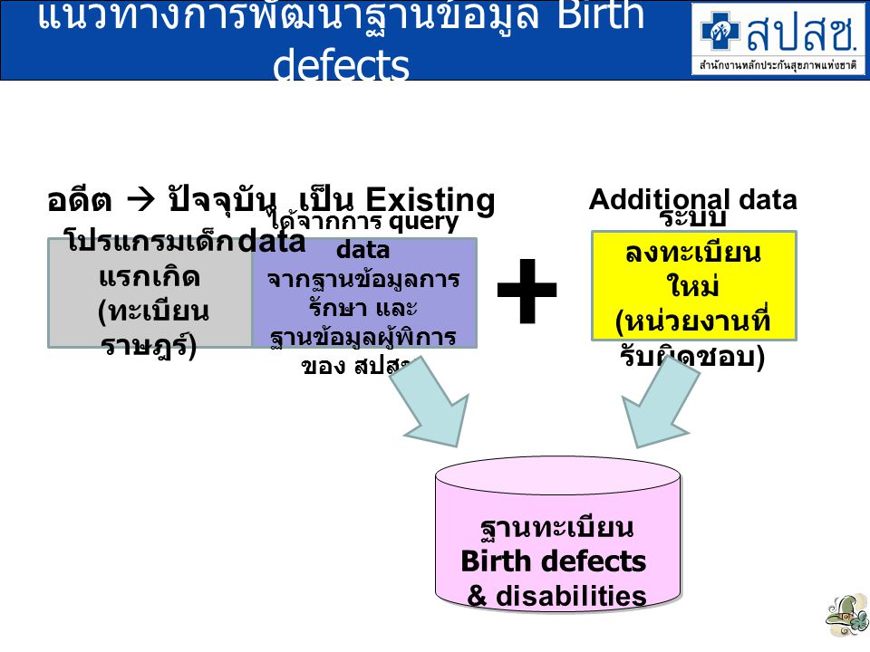 แนวทางการพัฒนาฐานข้อมูล Birth defects